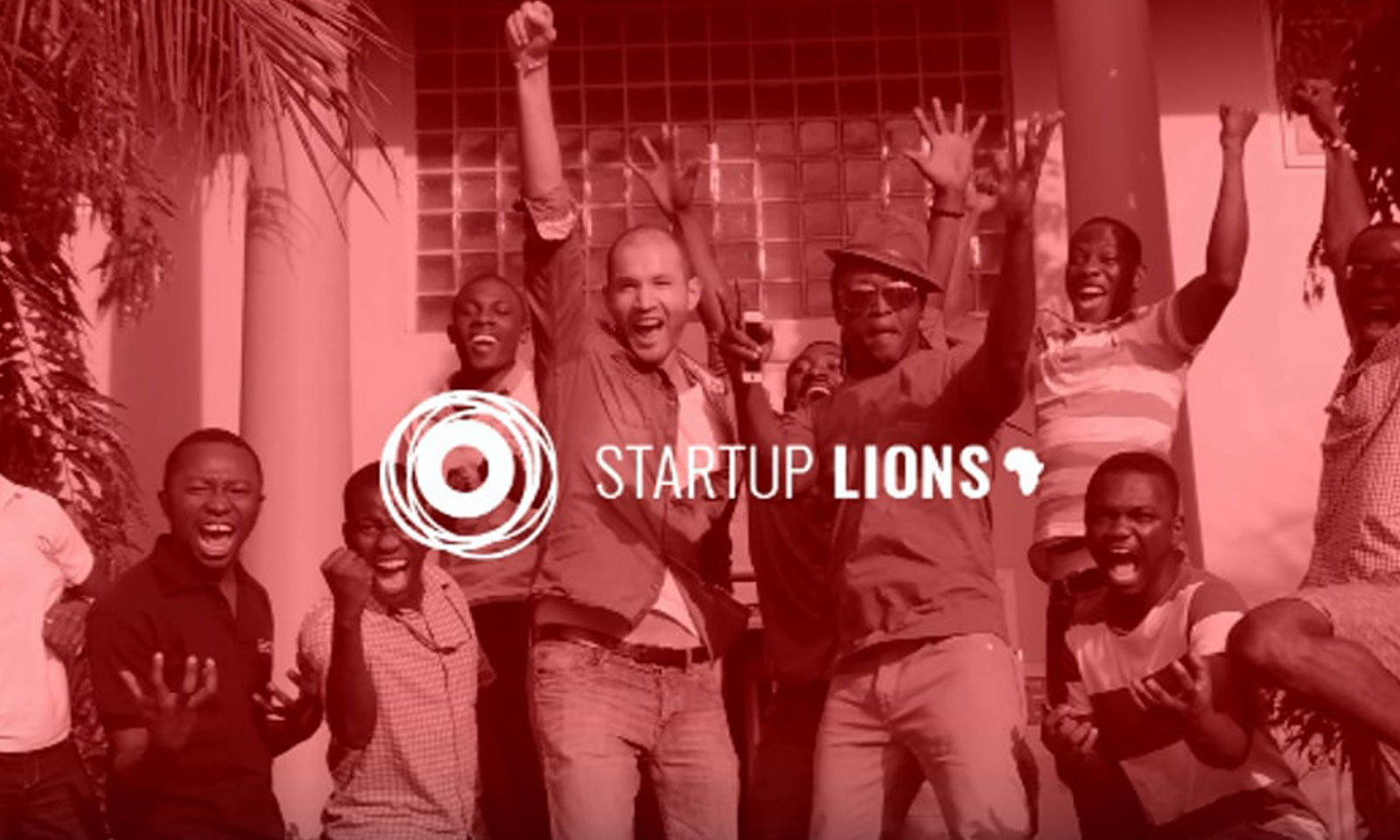 Startup Lions