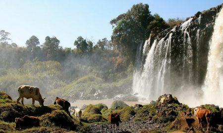 Hub City Live va faire naitre le Wakanda en Ethiopie